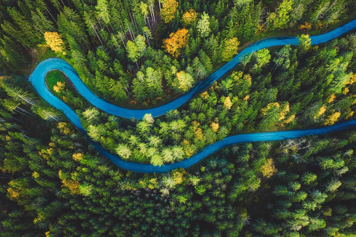 winding road in forest - financial planning services firm in farmington ct